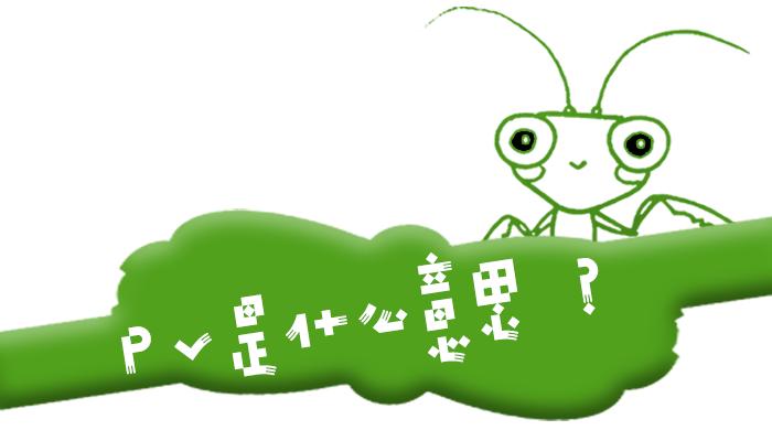 """互联网术语""""PV""""是什么意思?"""