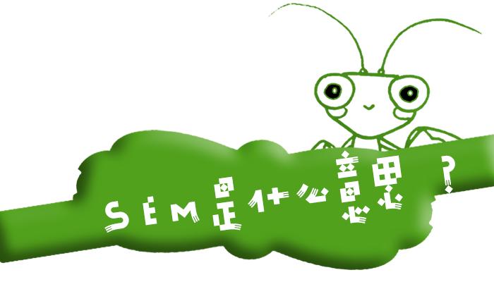 """互联网术语""""SEM""""是什么意思?"""