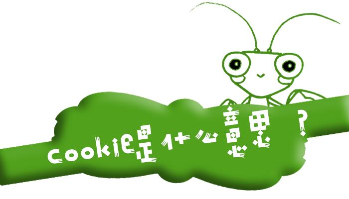 """互联网术语""""Cookie""""是什么意思?"""