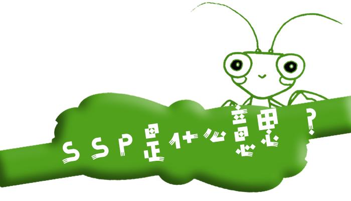 """广告术语""""SSP""""是什么意思?"""